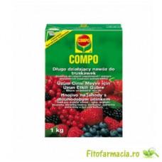 Fertilizator granule pentru arbusti cu fructe 1 kg