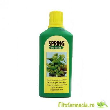 Spring Fertilizant pentru plante cu frunze verzi 500 ml