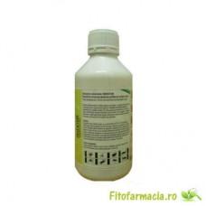 Insecticid universal impotriva capuselor - Insektum 1L