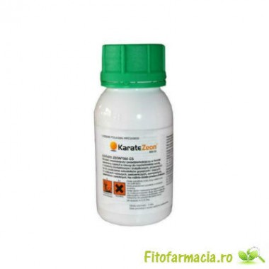 Karate Zeon 100 ml