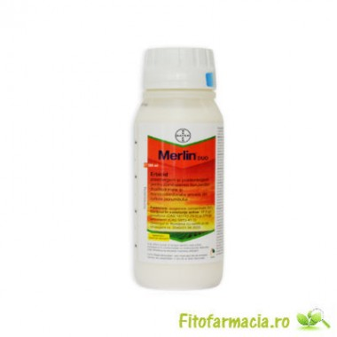 Merlin Duo 500 ml