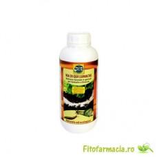 Granule impotriva melcilor si limacsilor REP46/1000 ml