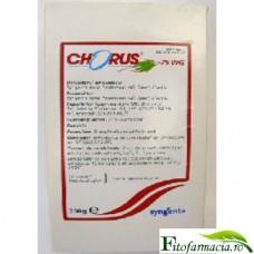 Chorus 75WG 200 g