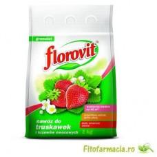Florovit capsuni si fragi 1kg