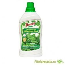 Florovit pt prevenirea ingalbenirii frunzelor 1l